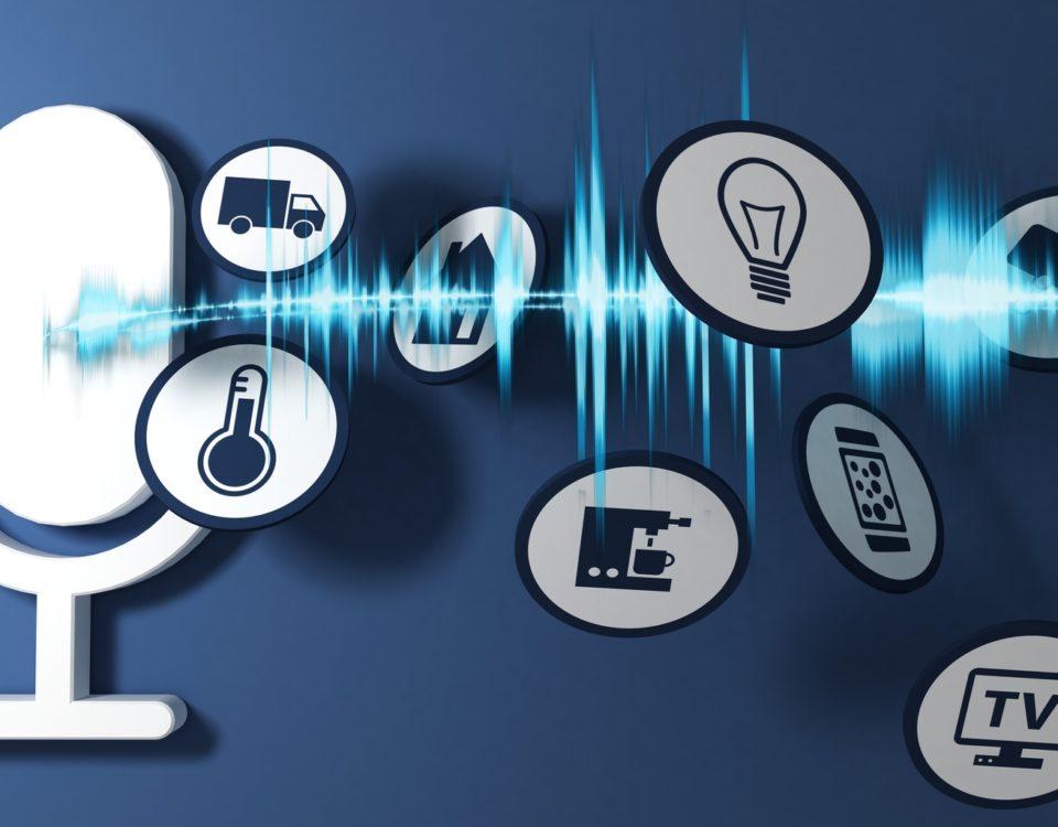 EDV-Betreuer, IT-Administrator, Systemadministrator, Netzwerkbetreuung, Datensicherung